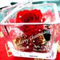 彼女に素敵な贈り物。ガラスケースに入った薔薇プリザーブドフラワー